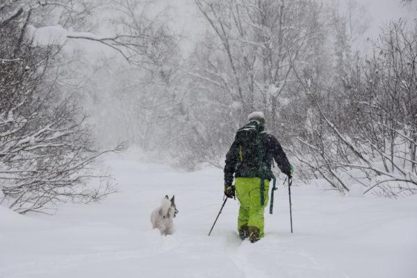 The fiends. Luzhba Skitouring Lodge, Siberia.