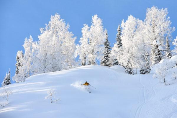 Siberian powder - Luzhba Skitouring Lodge